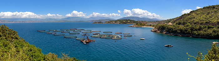 fish-farm